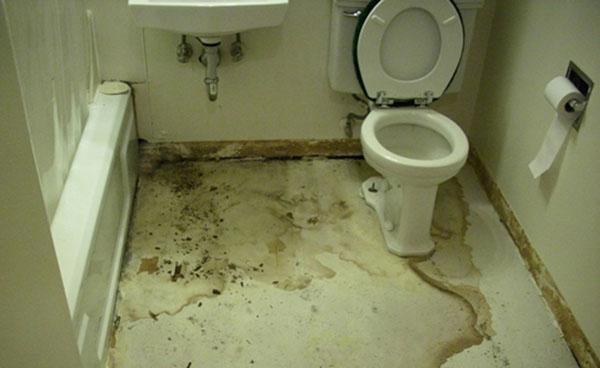 sàn nhà vệ sinh bị thấm dột